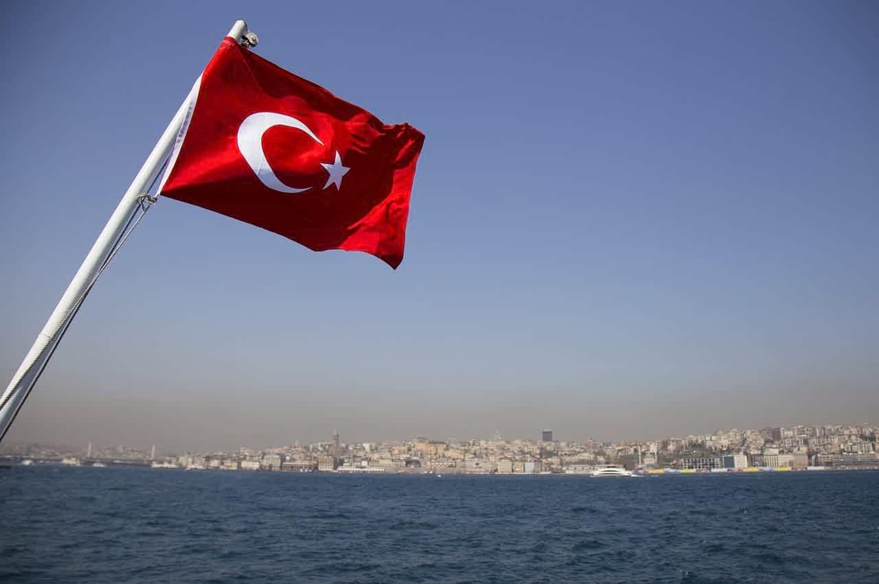 Flag Turtsii