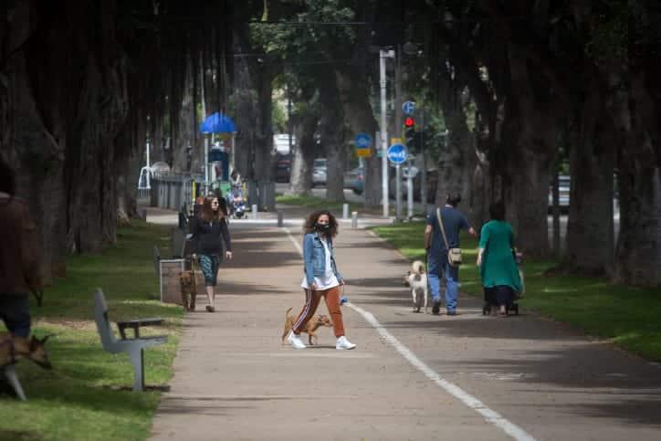 Izrailtyane vygulivayut sobak v odnom iz parkov Tel Aviva