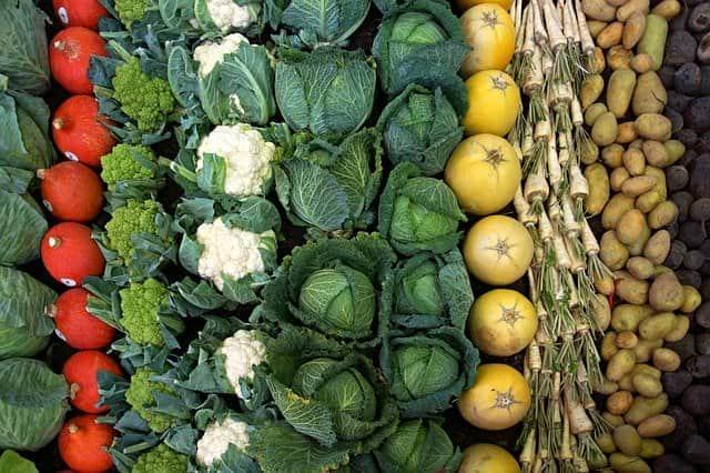 vegetables 1736170 640 1