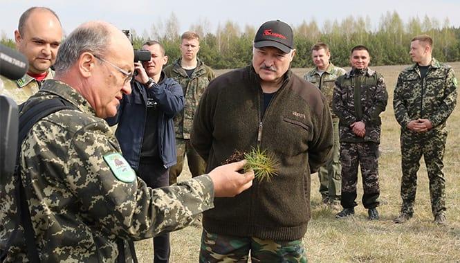 Aleksandr Lukashenko prinimaet uchastie v respublikanskom subbotnike