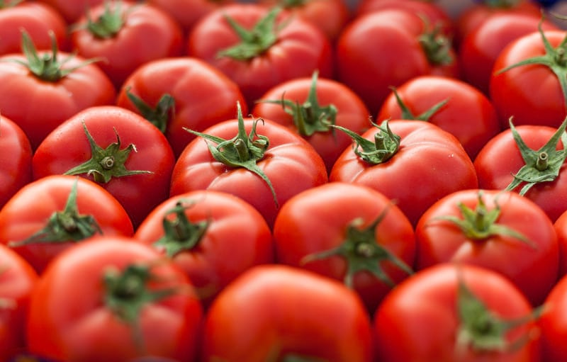 помидоры плоды картинка