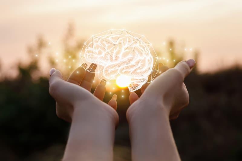 память мозг картинка
