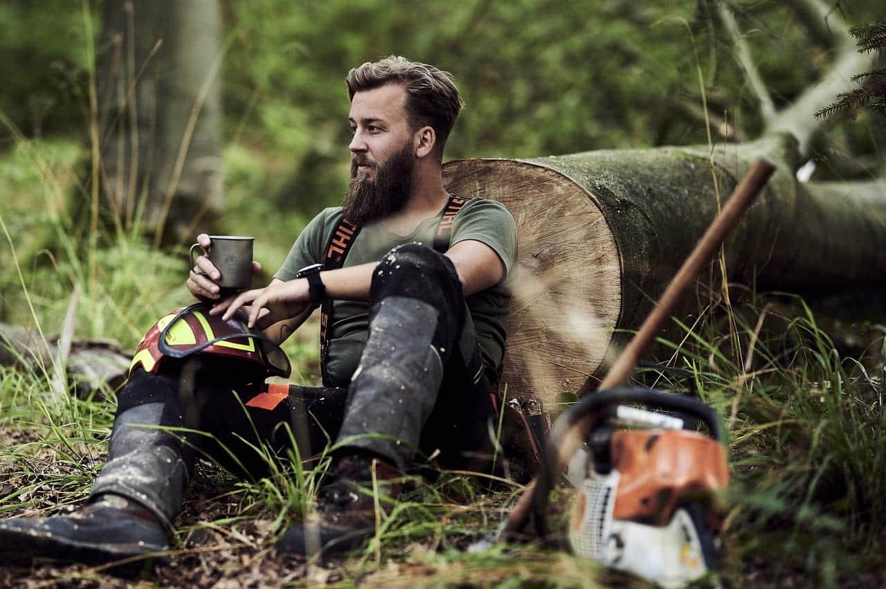 Ученые заявили, что в шерсти собак меньше бактерий, чем в бороде у мужчин