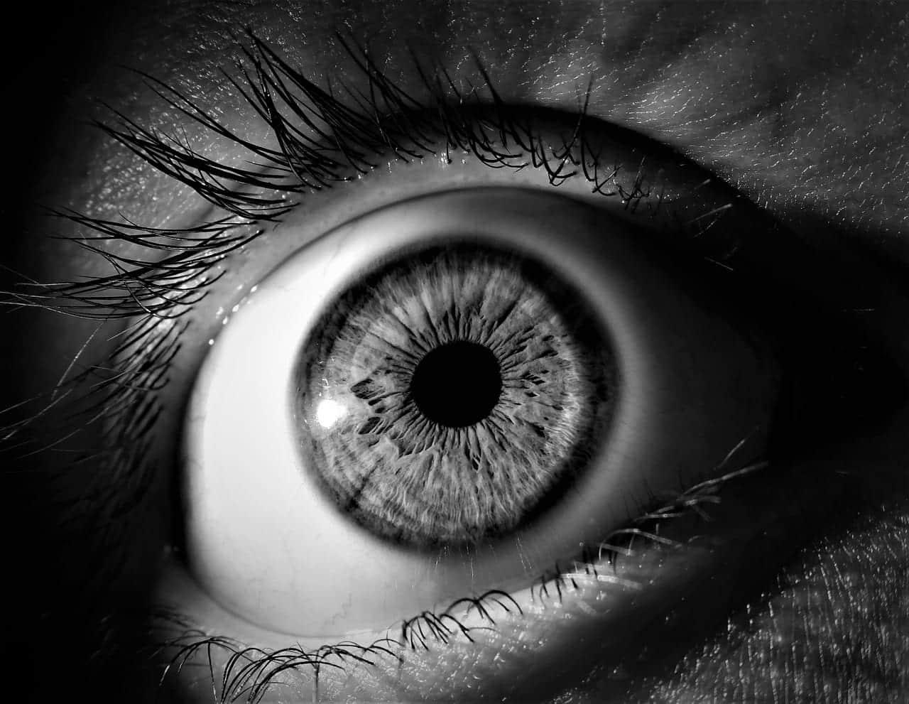 страх глаз картинка