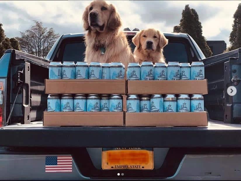 Retrivery pomogayut dostavlyat pivo v Nyu Jorke