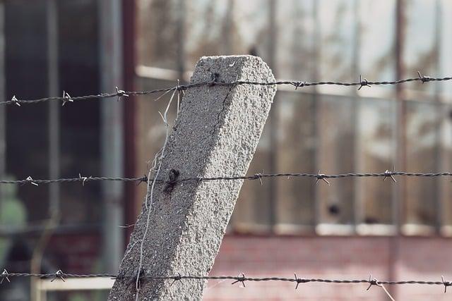 тюрьма ограждение колючая проволока картинка