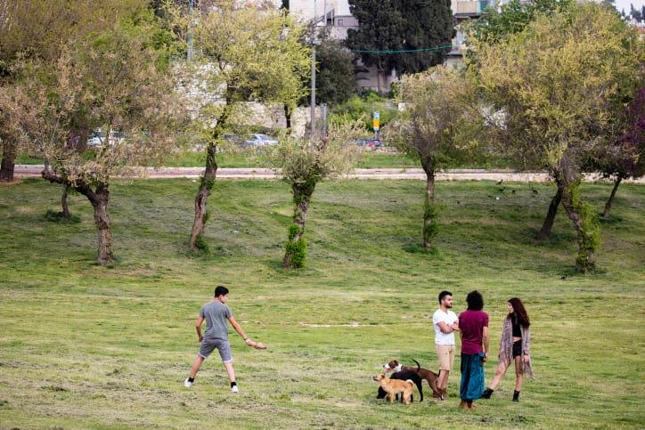 V Izraile otkrylis parki i zapovedniki 3