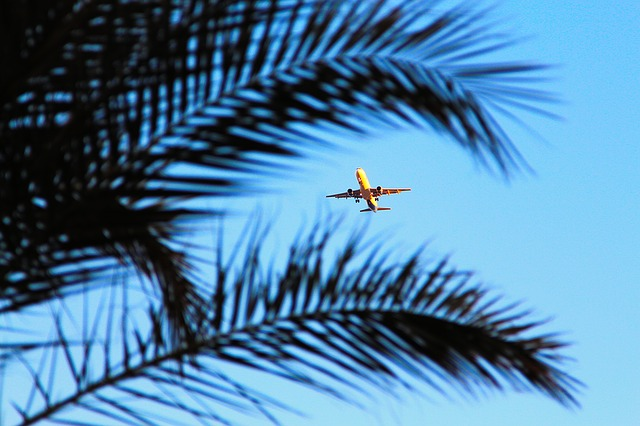 Самолет авиакомпания полет небо изображение