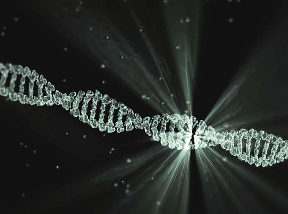 ДНК изображение