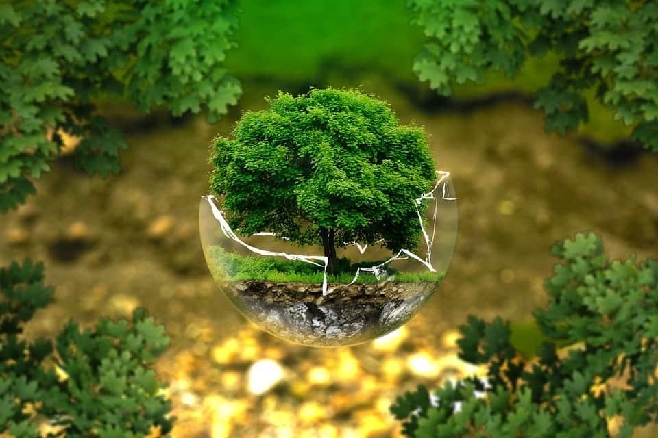 Экология абстракция картинка
