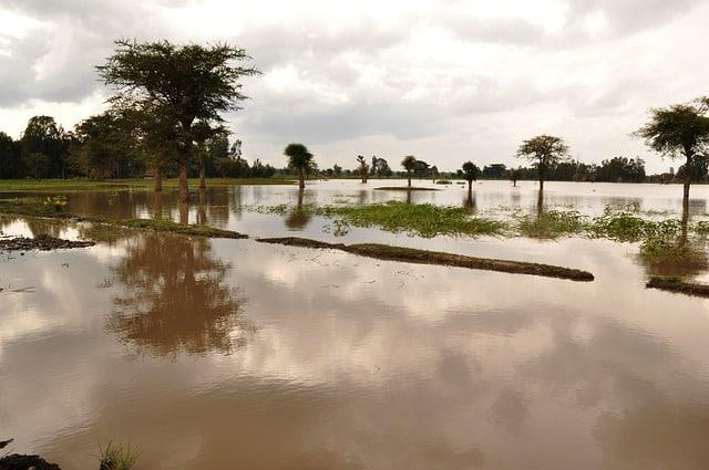 Наводнение уровень воды поднялся фото