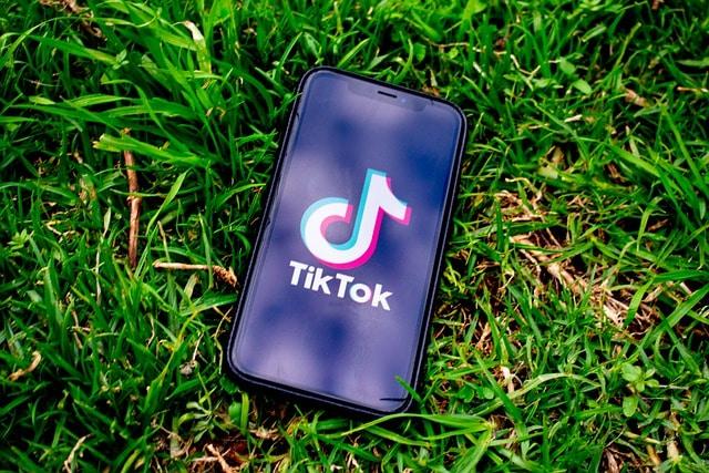 TikTok соцсети смартфон на траве картинка