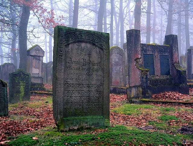 В Великобритании барсуки разрушили одно из местных кладбищ