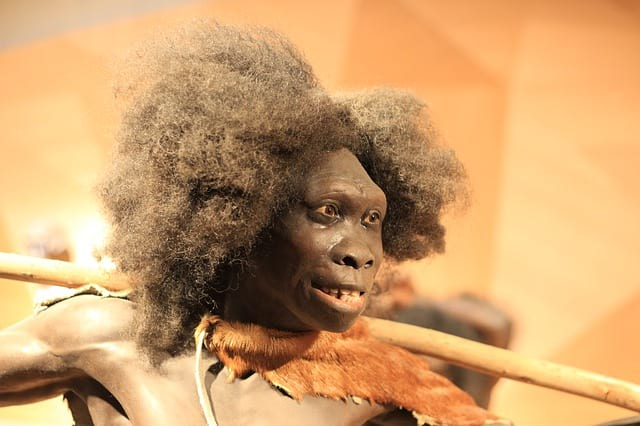 Неандерталец картинка