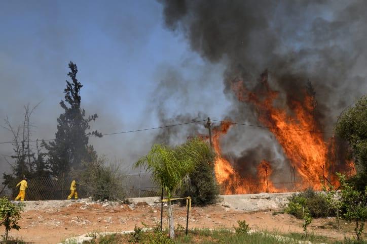пожары в израиле фото