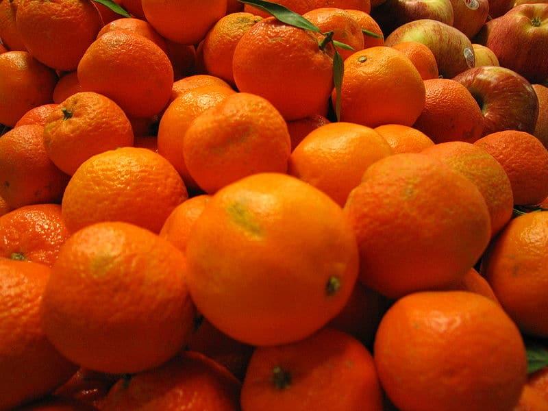 мандарины цитрус фото
