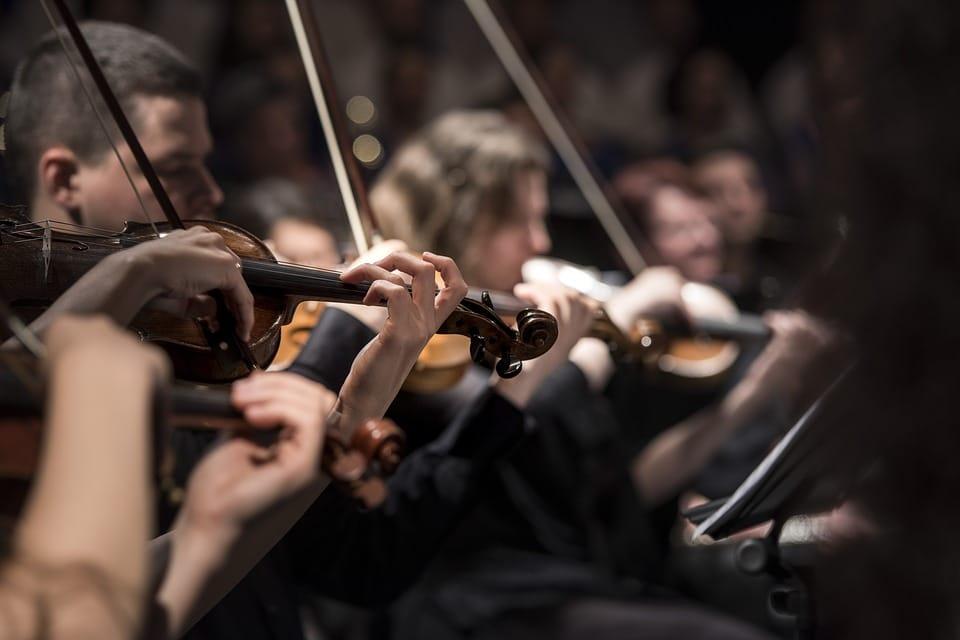 музыканты оркестра фото