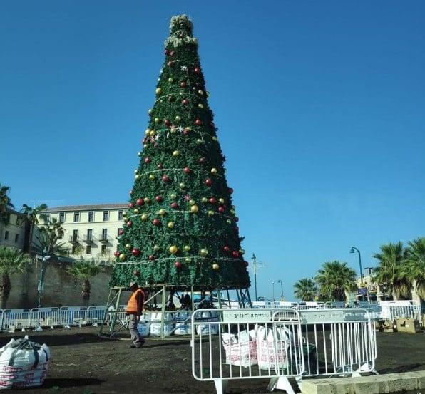 новогодняя елка израиль фото