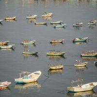 Рыбацкие лодки в порту Газы фото