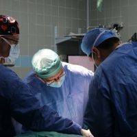 Пересадка органов фото