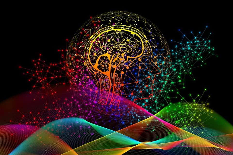 Мозг изображение
