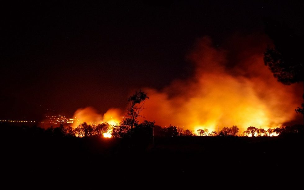 пожар лес фото