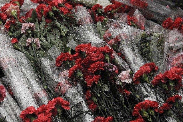 Гвоздики День Победы фото