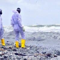 Экологическая катастрофа у побережья Шри-Ланки фото
