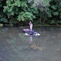 Сын крупного российского чиновника утопил в реке электрокар Tesla фото