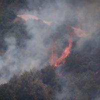 Пожар в пригороде Иерусалима фото