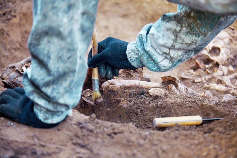 Археолог фото
