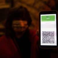 Зеленый паспорт фото