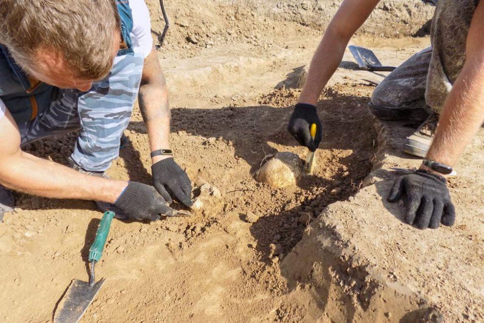 Археологи фото